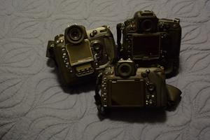 谈鸟类摄影数码单反相机选择的要素考量